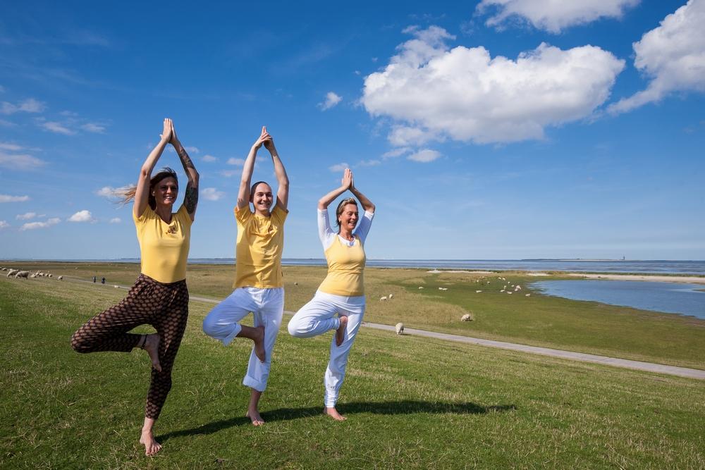 Yoga Vidya E V Nordsee Ahimsabnb